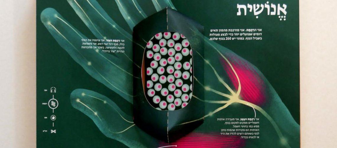 libro interactivo la celula